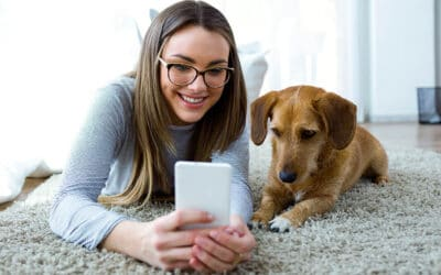 How to Rent An Apartment With a Pet
